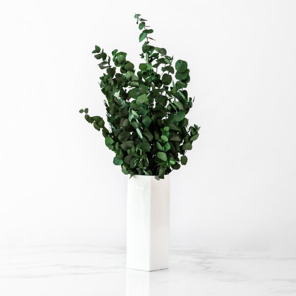 Flowers+jpgmini+(47+sur+77)